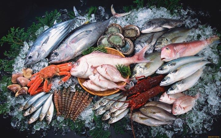 Начинающему рыболову
