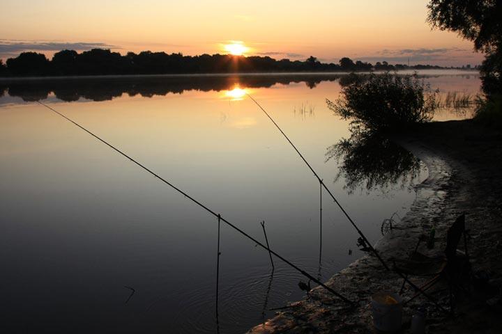 когда клюет рыба в реке